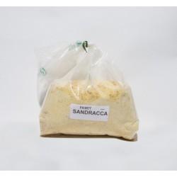 SANDRACCA kg 1 PA0577